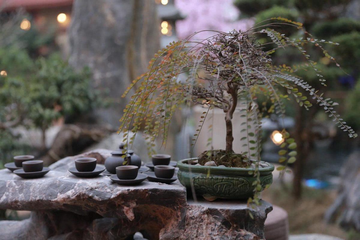 chùa Phật Quang du xuân